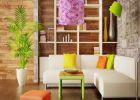 घर के लिए सही रंगों का चुनाव चमकाएगा किस्मत का सितारा