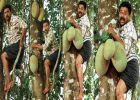 ബാലൻ വക്കീലിന്റെ 'കോമഡിവാദം' 21 നു തുടങ്ങും; ചിത്രത്തിന് വൻ വരവേൽപ് നല്കാന് ഫാൻസ്