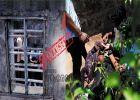 ഗ്ലൂവിലും വൈറ്റ്നറിലും ലഹരി തേടുന്ന കൗമാരം; ശ്രദ്ധിക്കണം, നിങ്ങളുടെ കുട്ടികൾക്കു പിന്നാലെയുണ്ട് മയക്കുവലകൾ