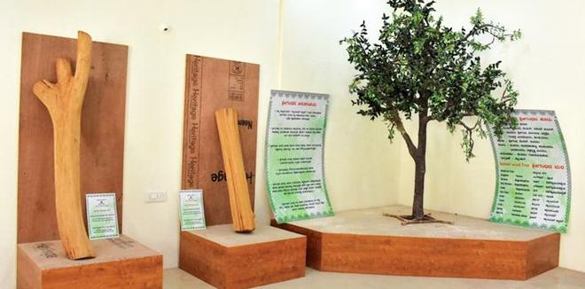 ഇന്ത്യയിലെ ആദ്യത്തെ 'ചന്ദന മ്യൂസിയം' ഉദ്ഘാടനത്തിന് ഒരുങ്ങി