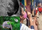 'കോടീശ്വരിയായ മേരി ചേച്ചി ലോക്ക്ഡൗൺ സമയത്ത് കാണിച്ച തമാശയായിരുന്നുവത്രേ ആ വിഡിയോ! ഡിജിറ്റലായിട്ടും മാറാത്ത ഹെഡ് കുട്ടൻപിളള സിൻഡ്രോം!'; രോഷക്കുറിപ്പ്